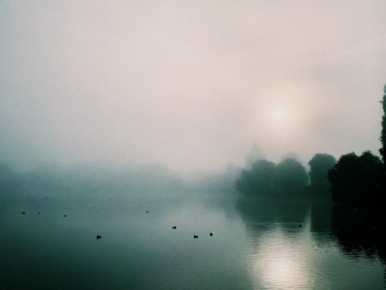 Söndagen då dimman kom