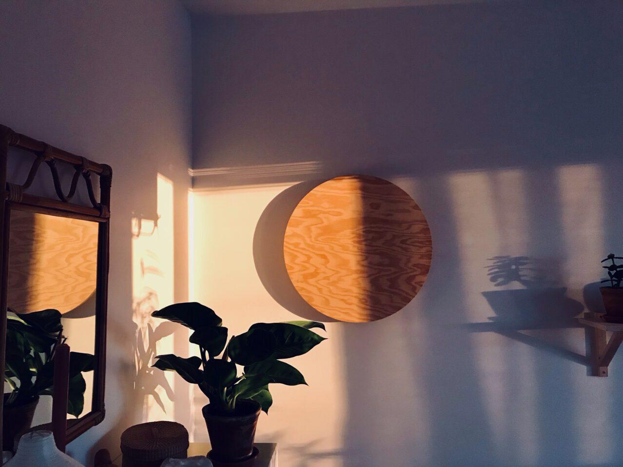 Ljusinsläpp, minimalism och en blodröd rönn